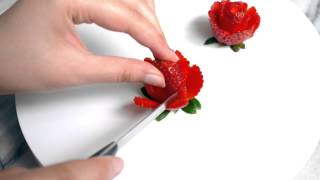 Strawberry Rose Tutorial
